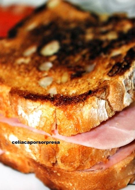 sandwich-mixto-de-cerca