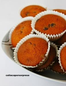 magdalenas-con-gotas-de-chocolate-de-cerca