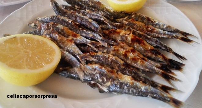 espetos-de-sardinas-santa-ana-denis