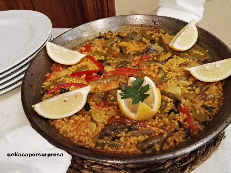 paella-de-verduras-torrenostra