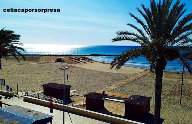 playa-torrenostra