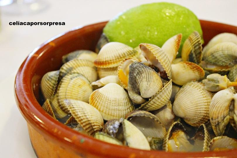 berberechos-el-gallego