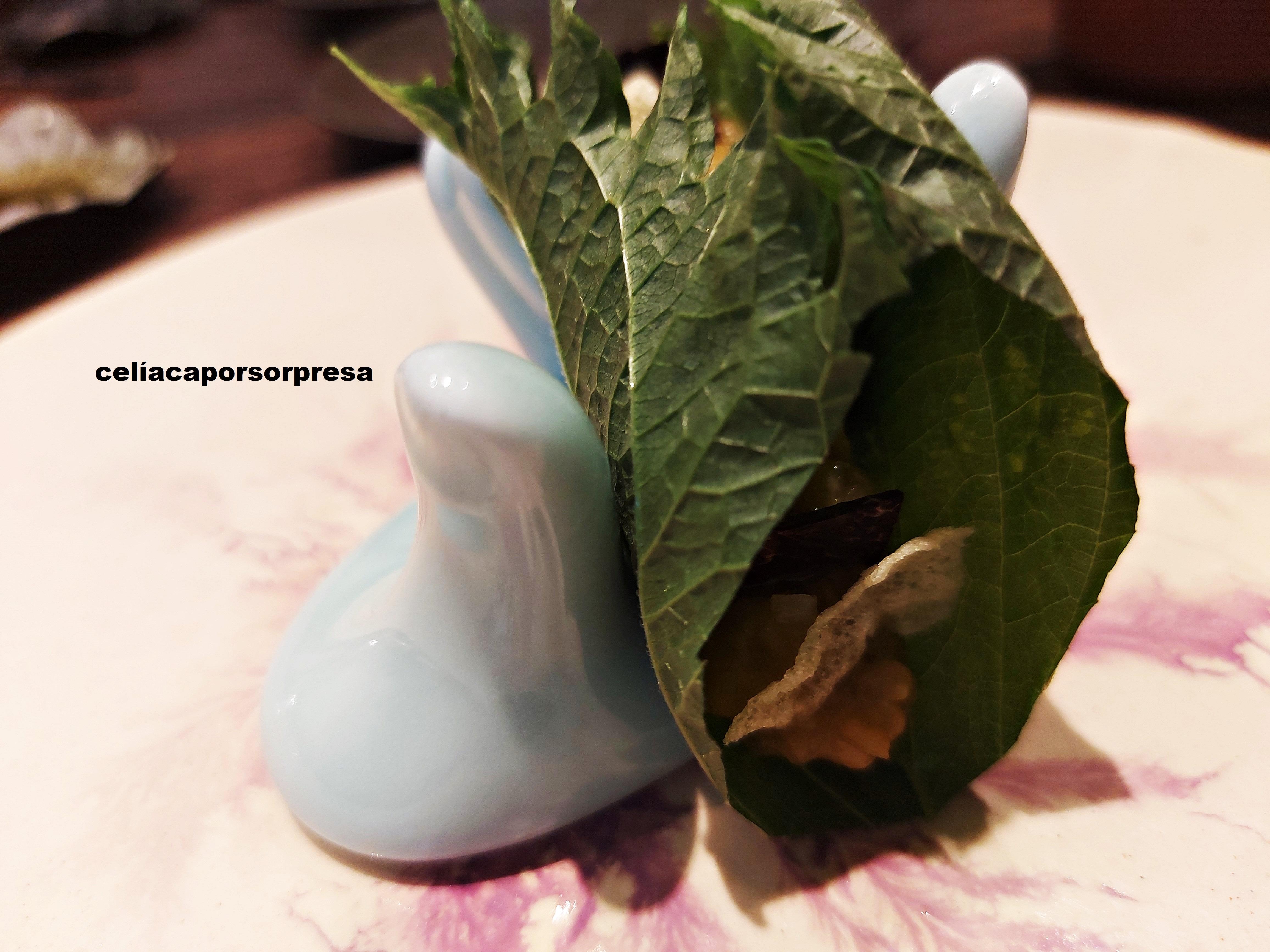 tartar-remolacha-invernadero